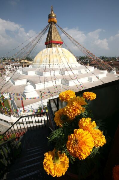 kathmandu buddhist singles Boudhanath stupa, buddhist temple, kathmandu built with a single stone in 1637 ad patan, kathmandu valley i have already been there but everything is so beautiful.