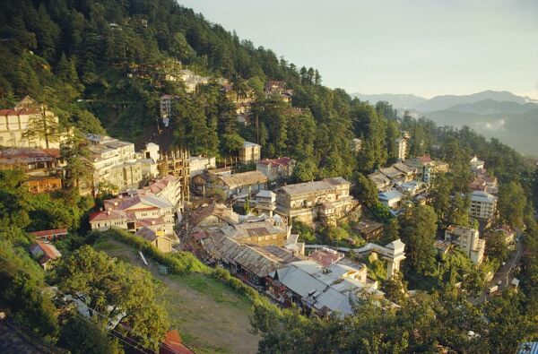 singles in simla Take a holiday of a lifetime in india on our golden triangle & shimla group tours with cox & kings travel.