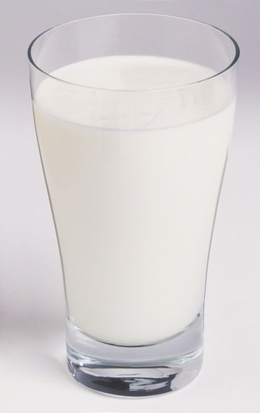 Glass of cold milk - Photo Prints - 9551949 - Media Storehouse