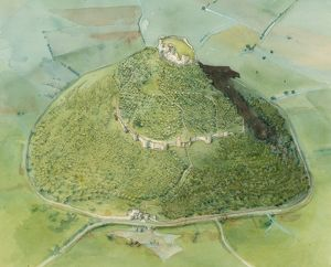 Beeston Castle N070841