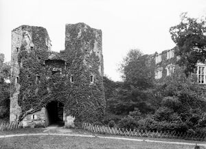Berry Pomeroy Castle in 1901 BB98_06418