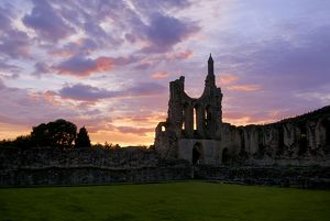Byland Abbey sunset N071401