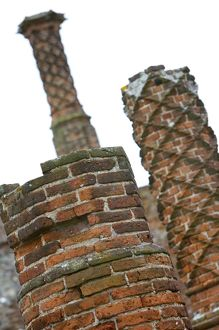 Chimneys at Framlingham Castle N071520