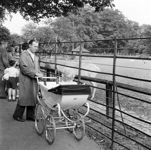 Dad with pram AA066358