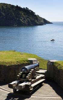 Dartmouth Castle DP149128