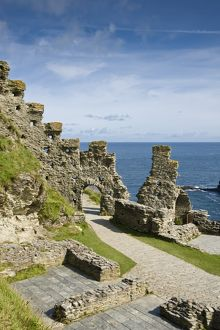 Tintagel Castle N090593