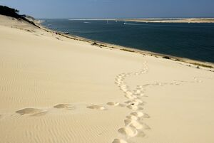 Footsteps in the sand on the Dune du Pyla, the largest dune in Europe, Bay of Arcachon