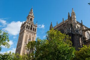 Sevilla Cathedral and Giralda, UNESCO World Heritage Site, Seville, Andalucia, Spain