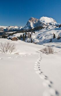 Snow shoe hiking is a great way of exploring the sunny Seiser Alm hiking paradise