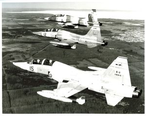 Formation of CF-5D freedom fighter aircraft from 419 Tactical Fighter Training Squadron