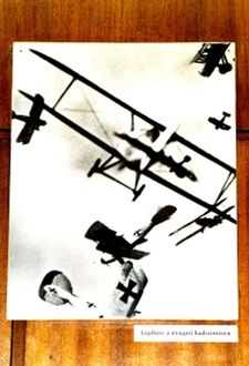 World War One German aircraft in an aerial dog fight