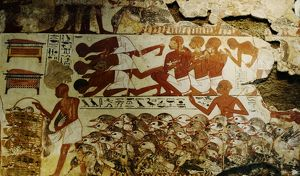 mural from tomb chapel of nebamun at thebes egypt