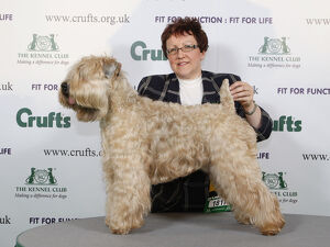 <b>Crufts 2009</b><br>Selection of 2 items