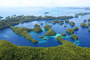 <b>The Islands of Palau</b><br>Selection of 52 items