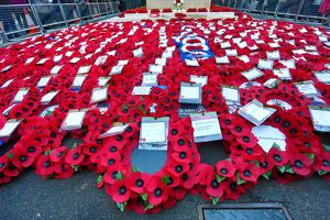 <b>Remembrance Day</b><br>Selection of 12 items
