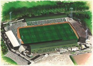 Home Park Art - Plymouth Argyle #8651797