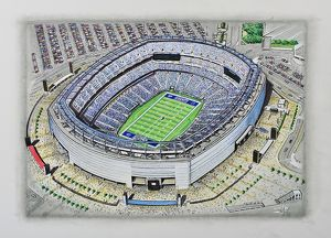 <b>Stadia of NFL USA</b><br>Selection of 1 items